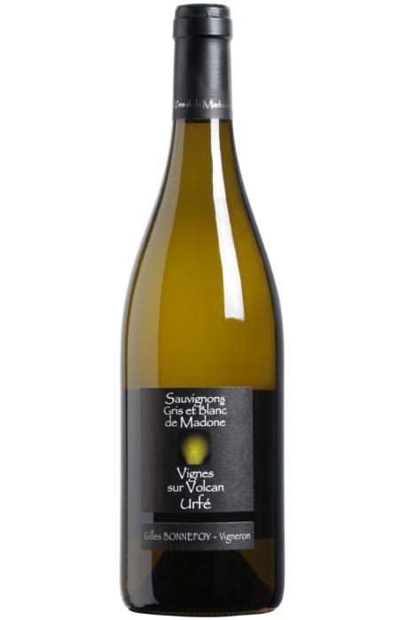 Les Vins de la Madonne - Gilles Bonnefoy - IGP Urfé - Sauvignon - 2019